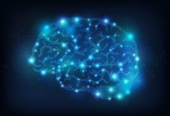 Brain_anatomy_medical_head_skull_digital_3_d_x_ray_xray_psychedelic_3720x2631