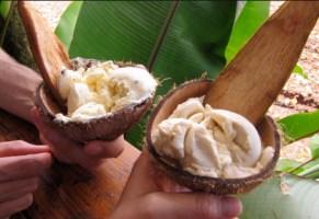 CoconutGlens_003 [320x200]